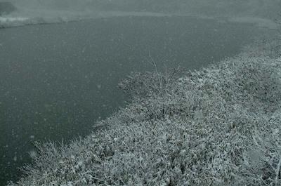 川面に降る雪.jpg