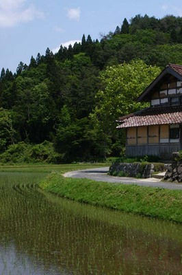 shizukanagogo.jpg